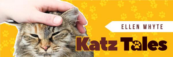 Katz Tales